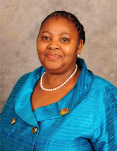 Minister of Defence and  Military Veterans Ms Nosiviwe Mapisa-Nqakula
